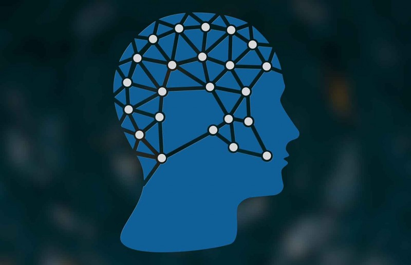 Geodesic Head Web
